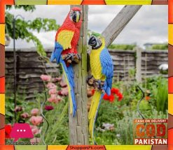 Wall Hanging Real Like Macaw Parrot