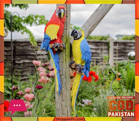buy wall hanging real like macaw parrot at best price in pakistan. Black Bedroom Furniture Sets. Home Design Ideas
