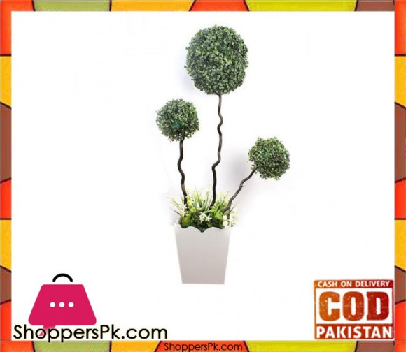 The Florist Luxury Artificial Imported Bonsai Ball Rubber Plant with Pot - 1