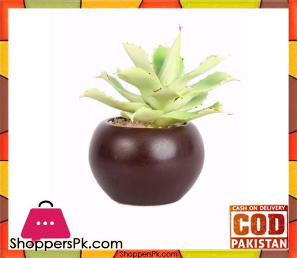 The Florist Artificial Cactus Plant with Pot - FL48