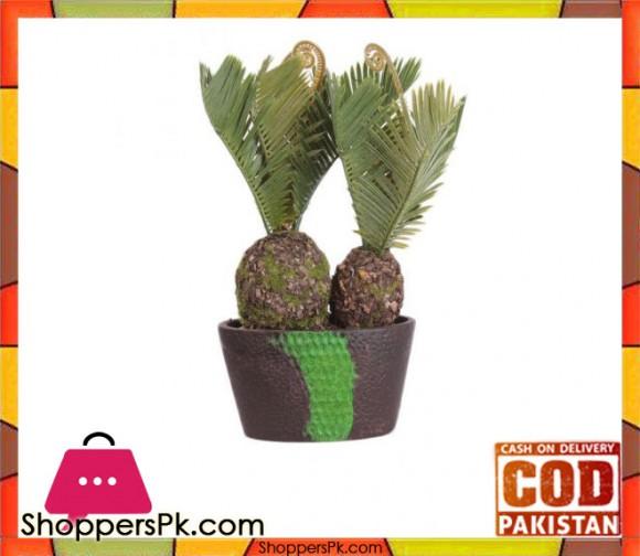 The Florist Pineapple Cactus Arrangement Plant with fibre Pot - FL51