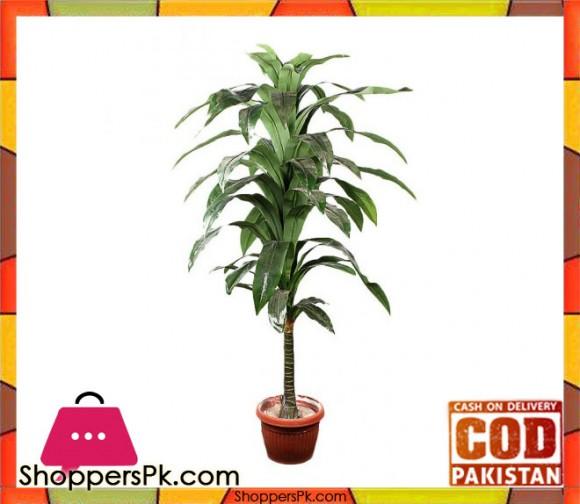 The Florist FLOR17 - Drazenia Green Plant Pot