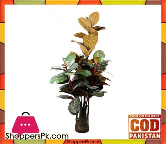 The Florist FLOR22 - Five Branches Rubber Plant