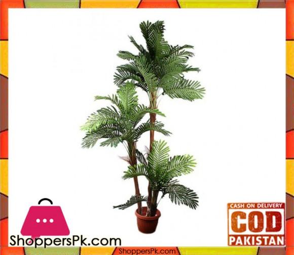The Florist FLOR23 - Rubber Coconut Chaal Plant