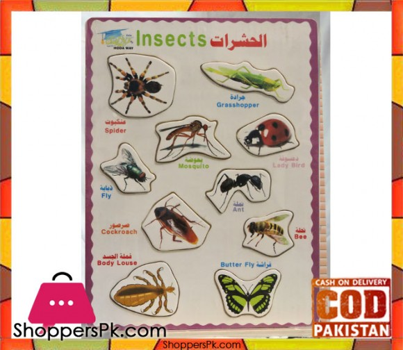 Early Educational Wooden Puzzle Toy Insects
