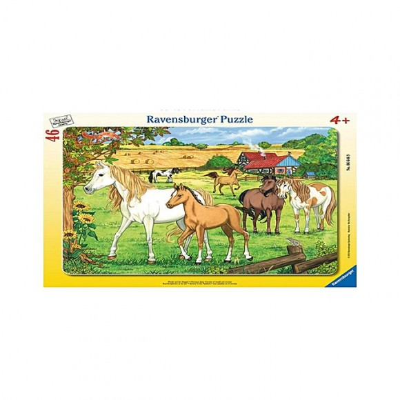 Ravensburger 46Pc Frame Puzzle- Horses In The Paddock (066469)