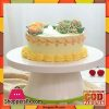 New Design Food Grade Plastic Revolving Cake Turntabe