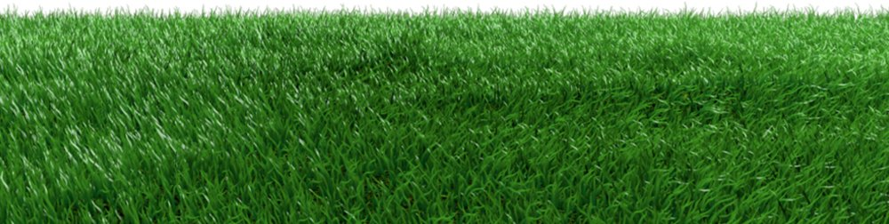 Real Feel Artificial Grass Wholesale Price in Pakistan - 10 mm to 50 mm