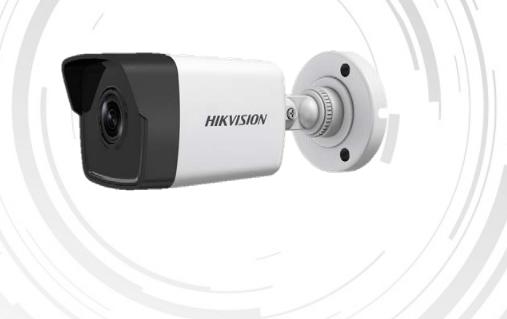 HKV IP DS-2CD1031-I