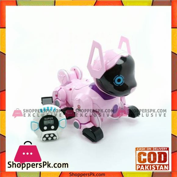 High Quality Kids Playing Robot Stunt Roll Puppy